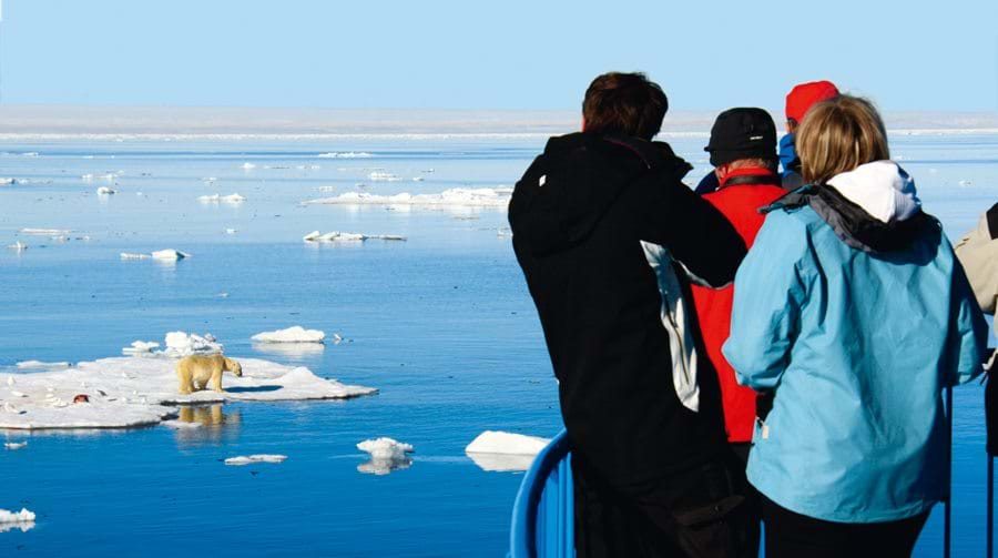 Svalbard, expedition, Cruise, Arctic, Polar bear, wildlife,