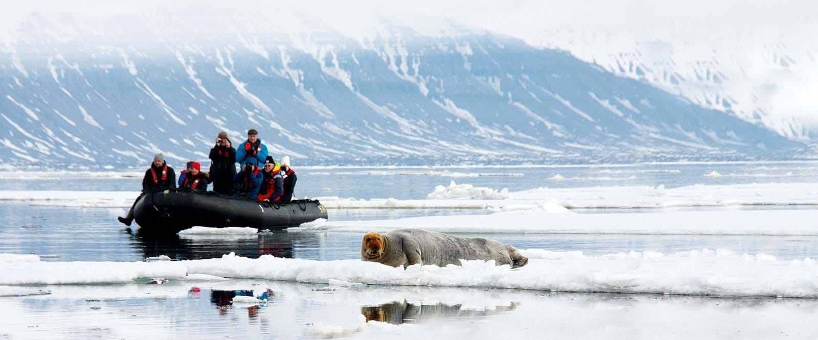 Cruising in the Arctic